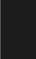 biedermeierpaar-blumenstraeussl-200px